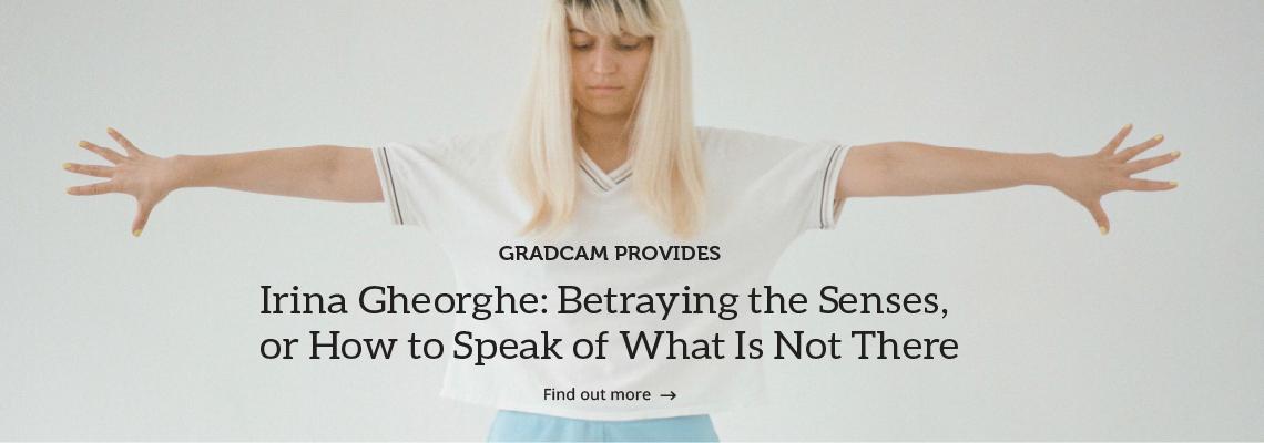 13_gradcam_promotes